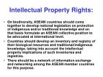 intellectual property rights26