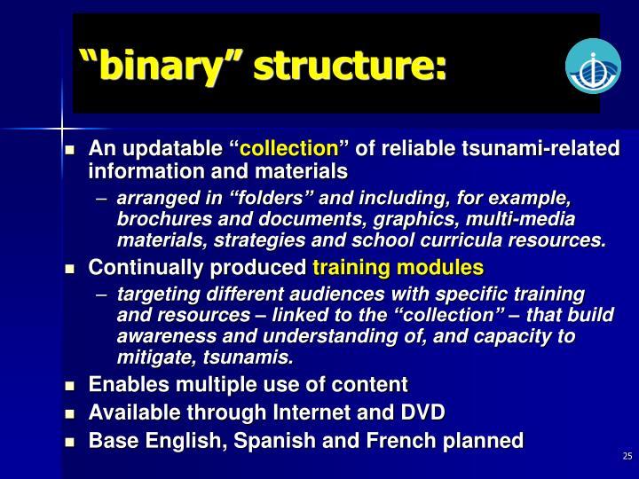 """binary"" structure:"