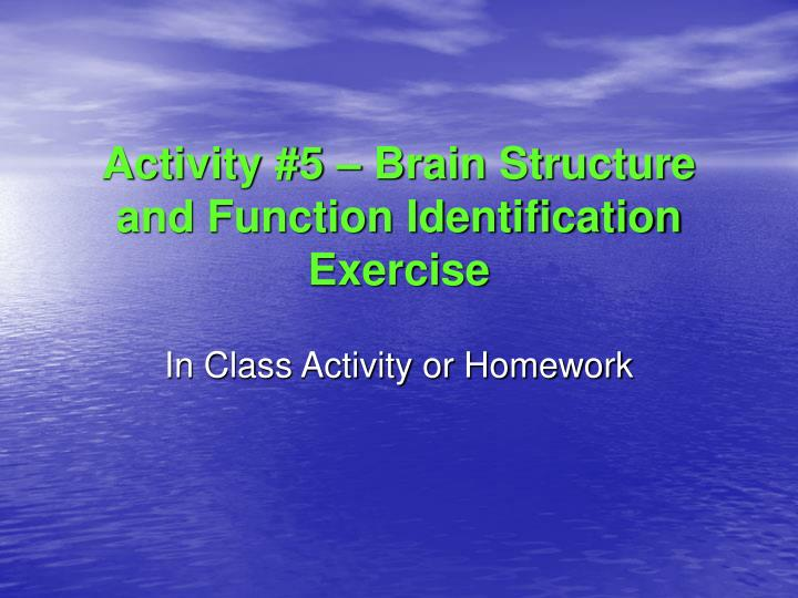 Activity #5 – Brain Structure and Function Identification Exercise