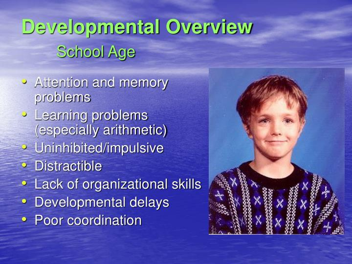 Developmental Overview