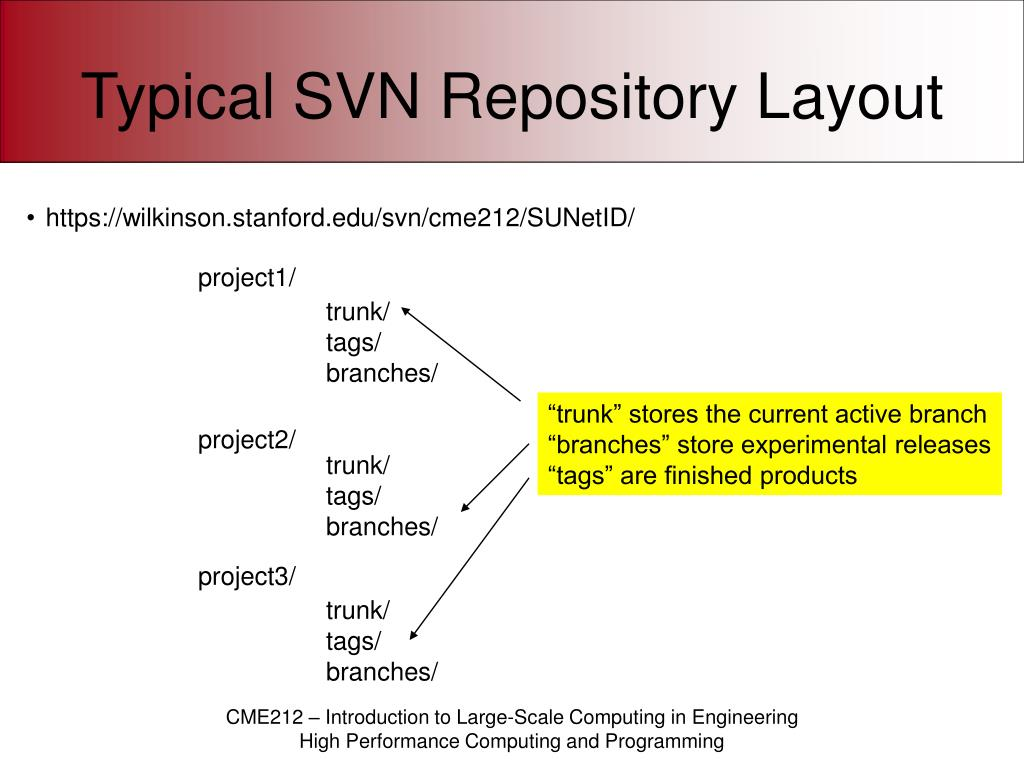 Typical SVN Repository Layout