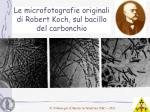 le microfotografie originali di robert koch sul bacillo del carbonchio