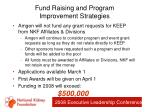 fund raising and program improvement strategies29