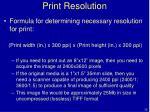print resolution