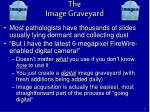 the image graveyard