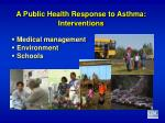 a public health response to asthma interventions