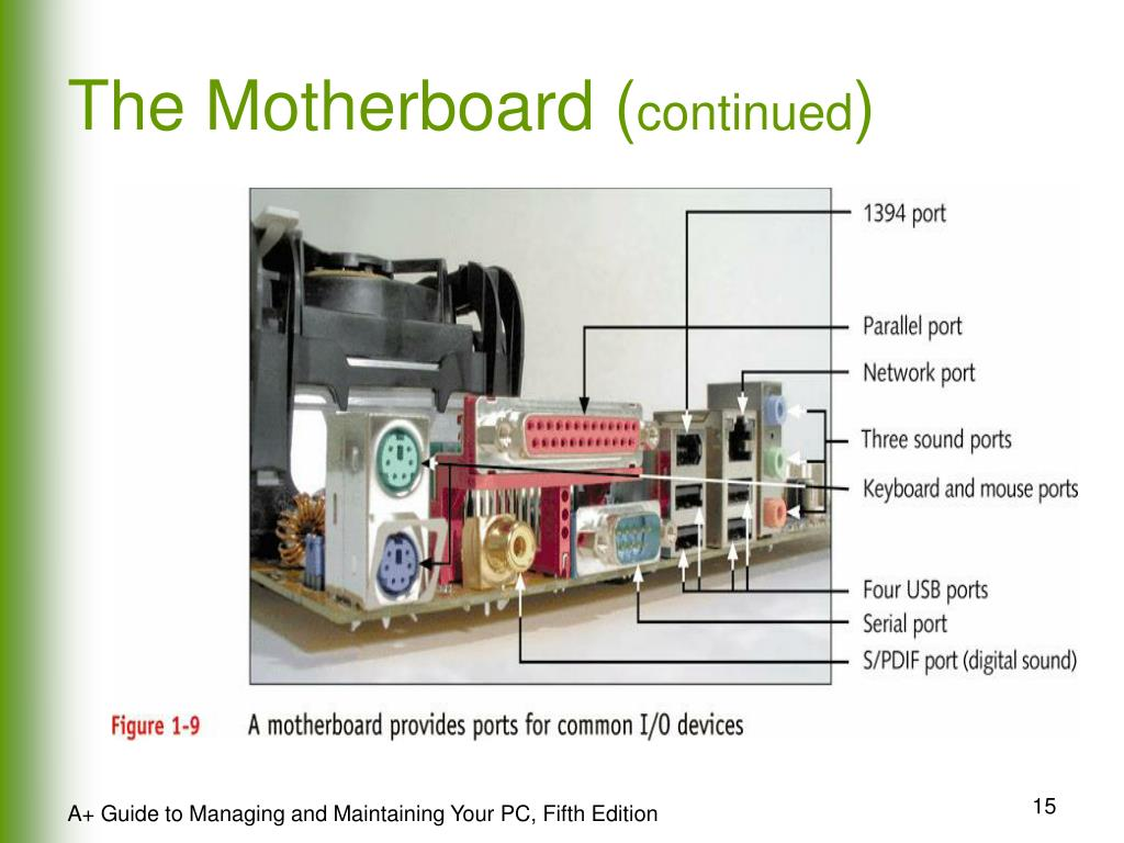 The Motherboard (