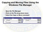 copying and moving files using the windows file manager
