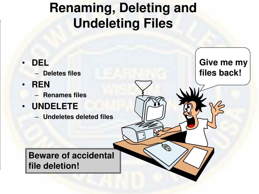 Renaming, Deleting and