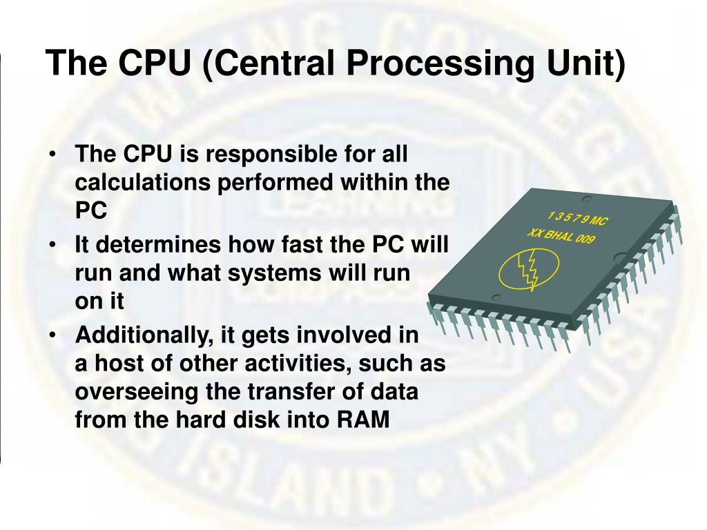 The CPU (Central Processing Unit)