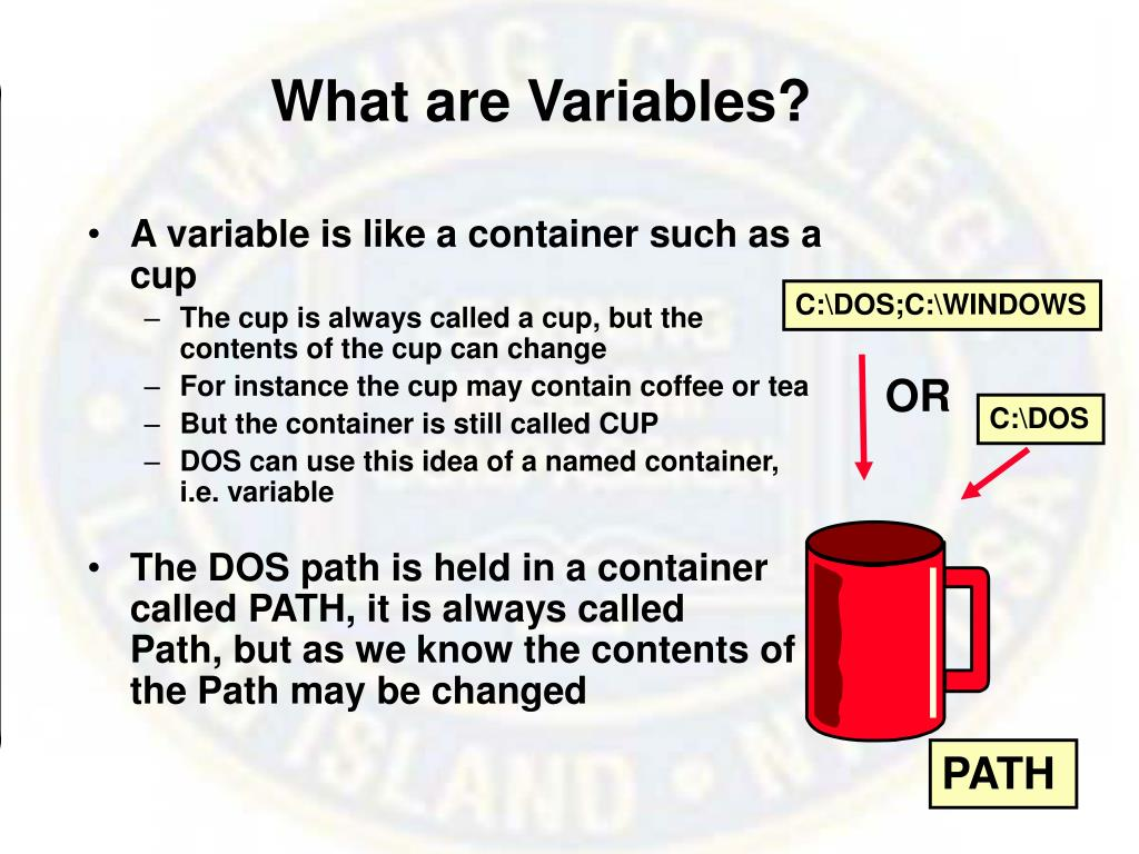 What are Variables?