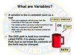 what are variables