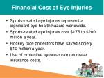 financial cost of eye injuries