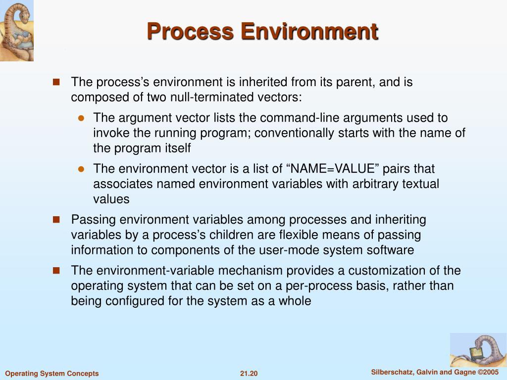Process Environment