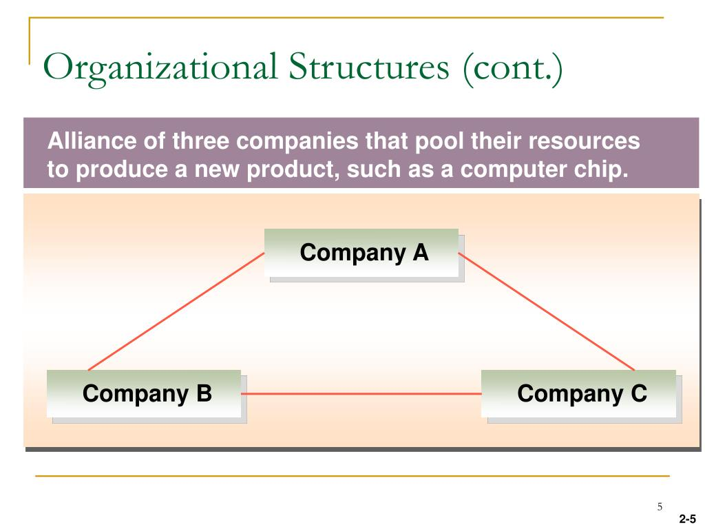 Organizational Structures (cont.)