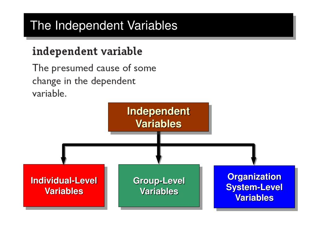Individual-Level Variables