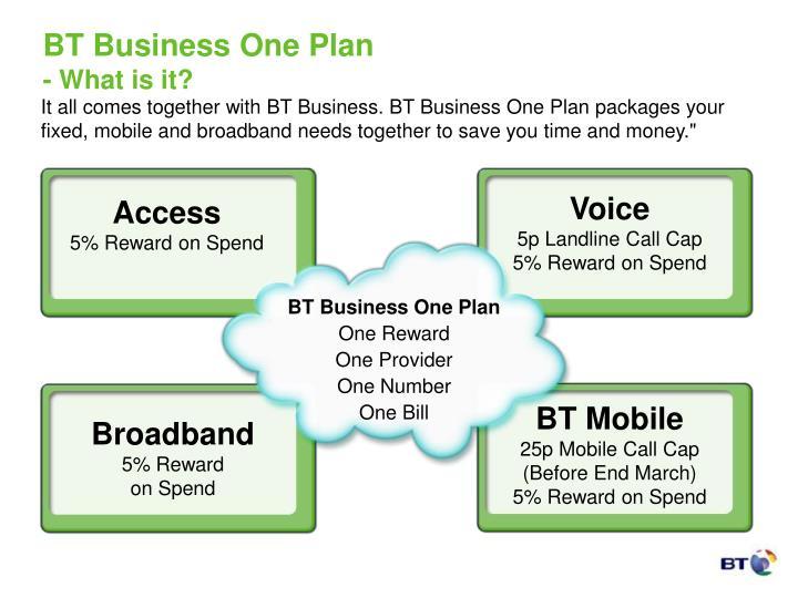 bt business one plan