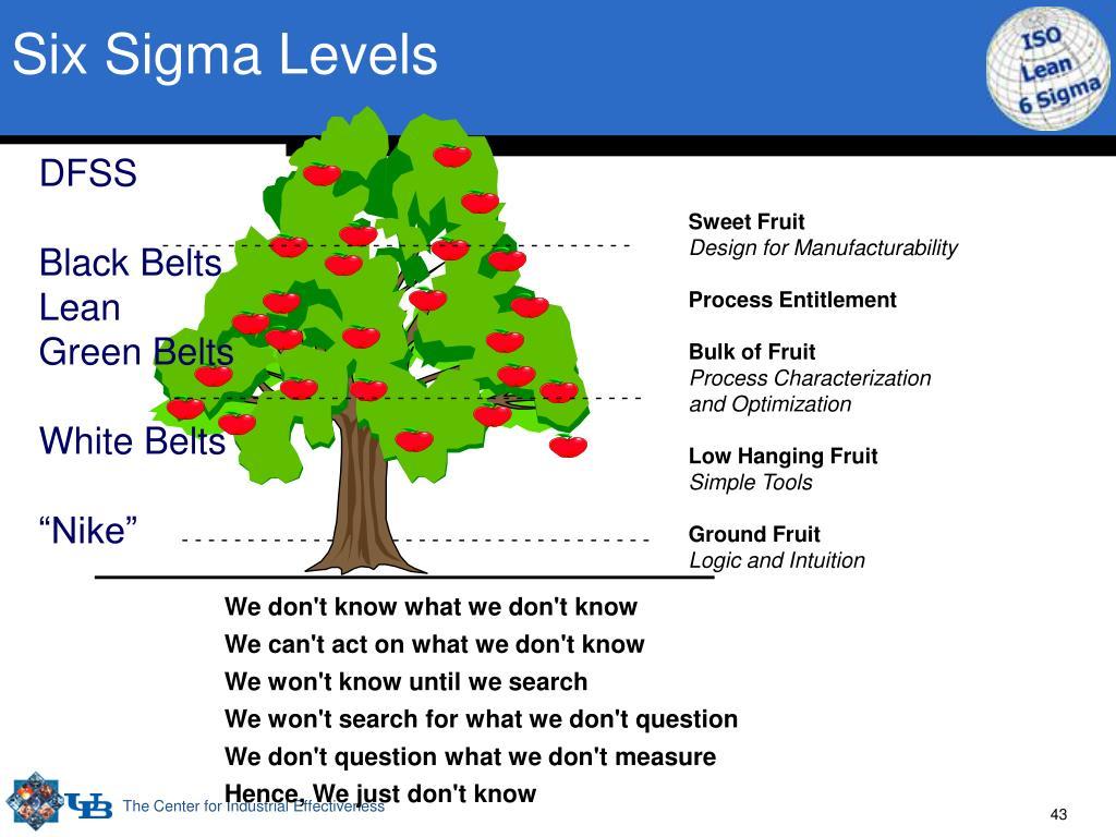 Six Sigma Levels