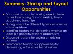 summary startup and buyout opportunities