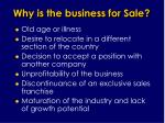 why is the business for sale