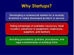 why startups