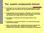 the system components interact