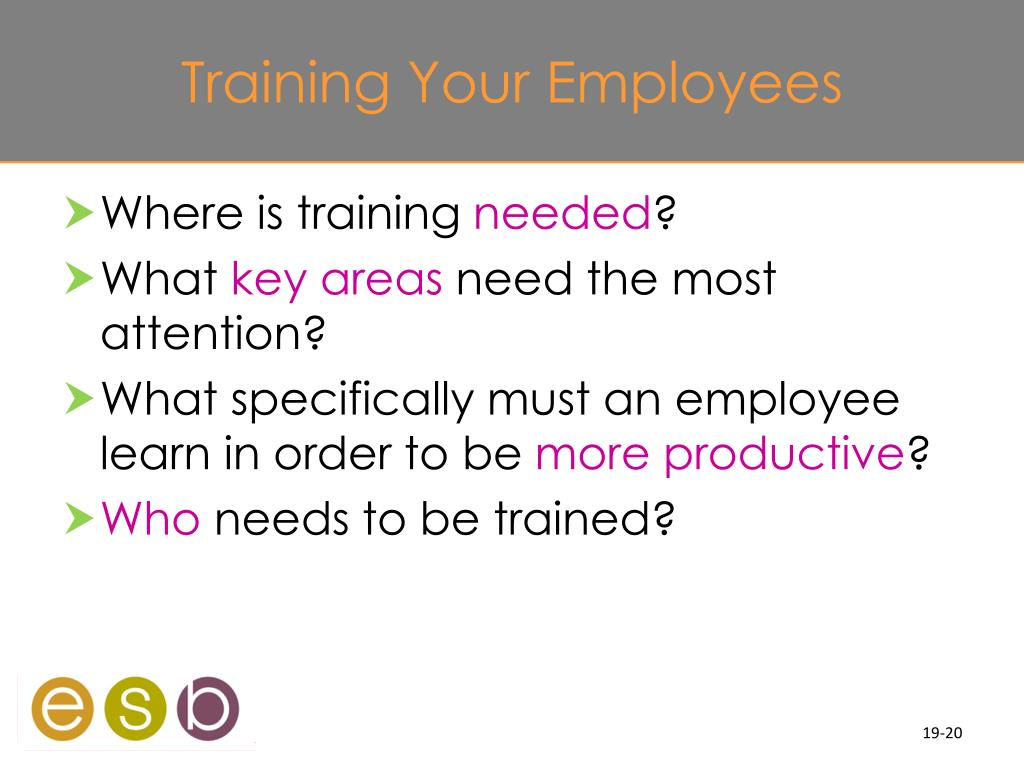 Training Your Employees