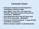 consumer cases