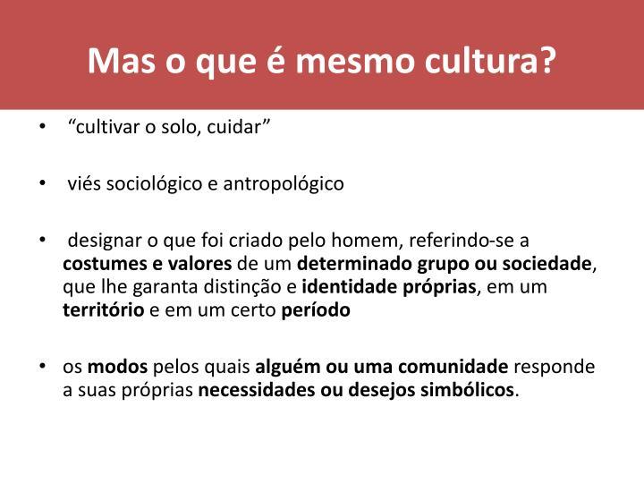Mas o que mesmo cultura