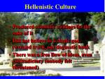 hellenistic culture