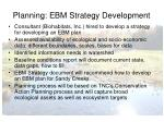 planning ebm strategy development