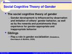social cognitive theory of gender