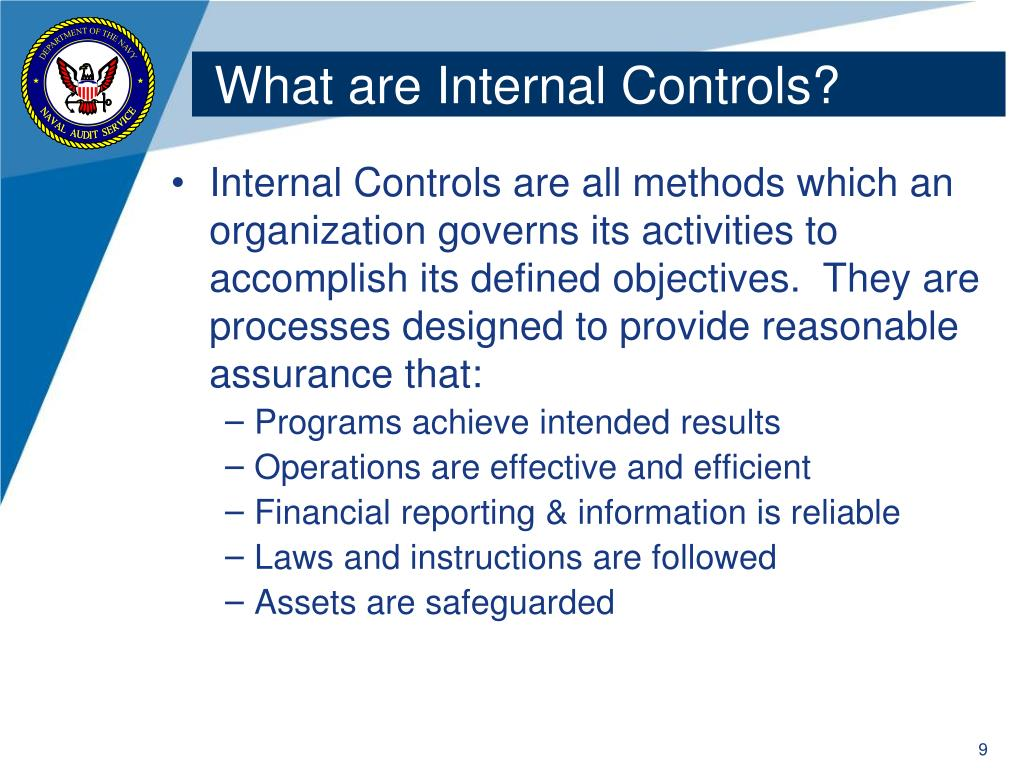 What are Internal Controls?