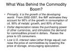 what was behind the commodity boom