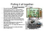 pulling it all together freshwater basics