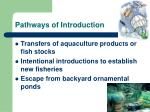 pathways of introduction5