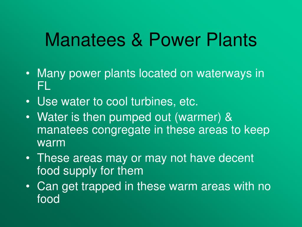 Manatees & Power Plants