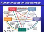human impacts on biodiversity