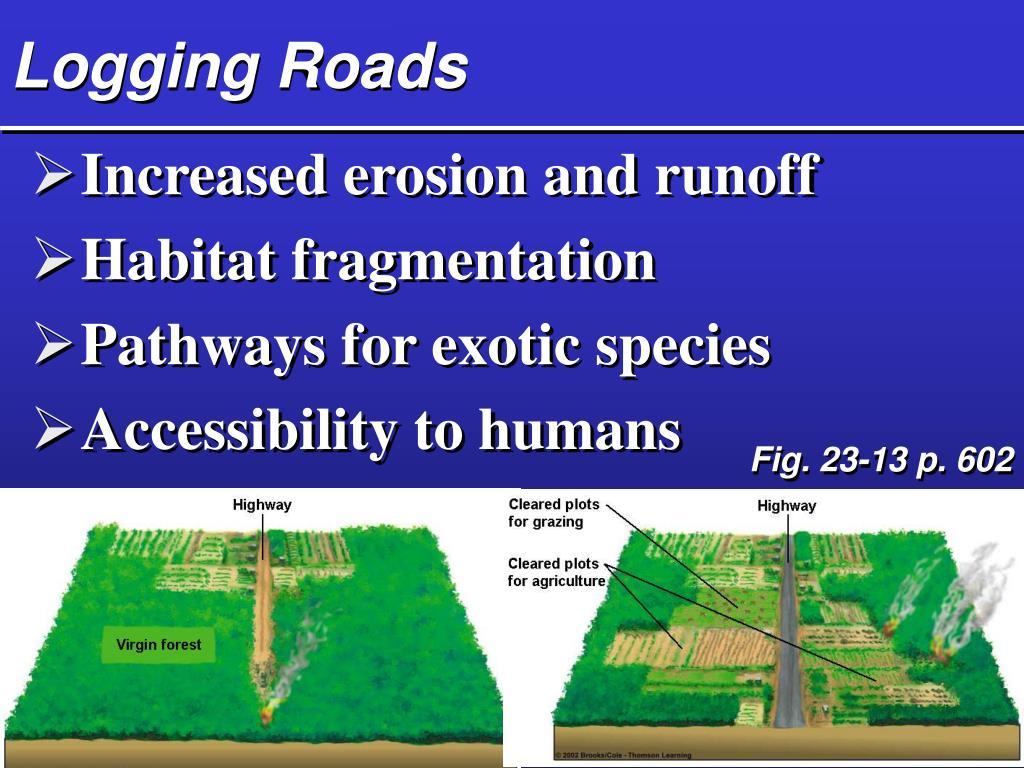 Logging Roads
