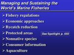 managing and sustaining the world s marine fisheries