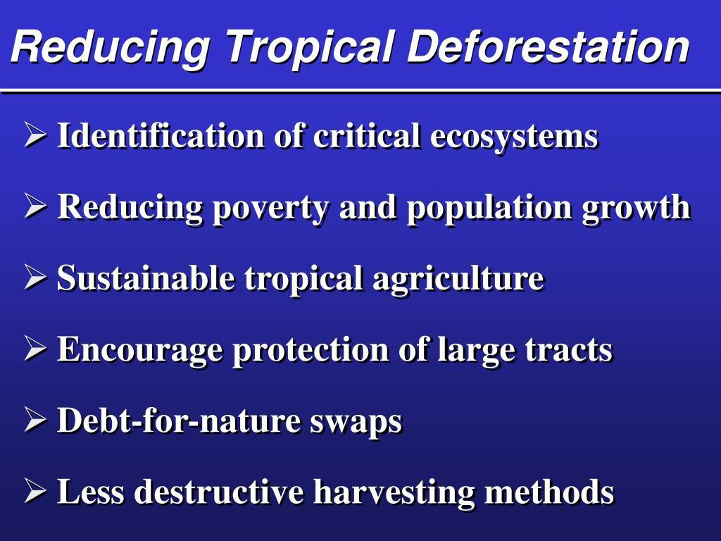 Reducing Tropical Deforestation