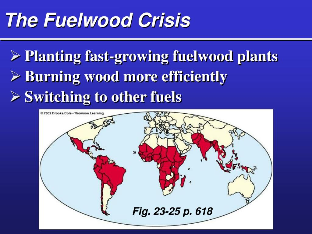 The Fuelwood Crisis