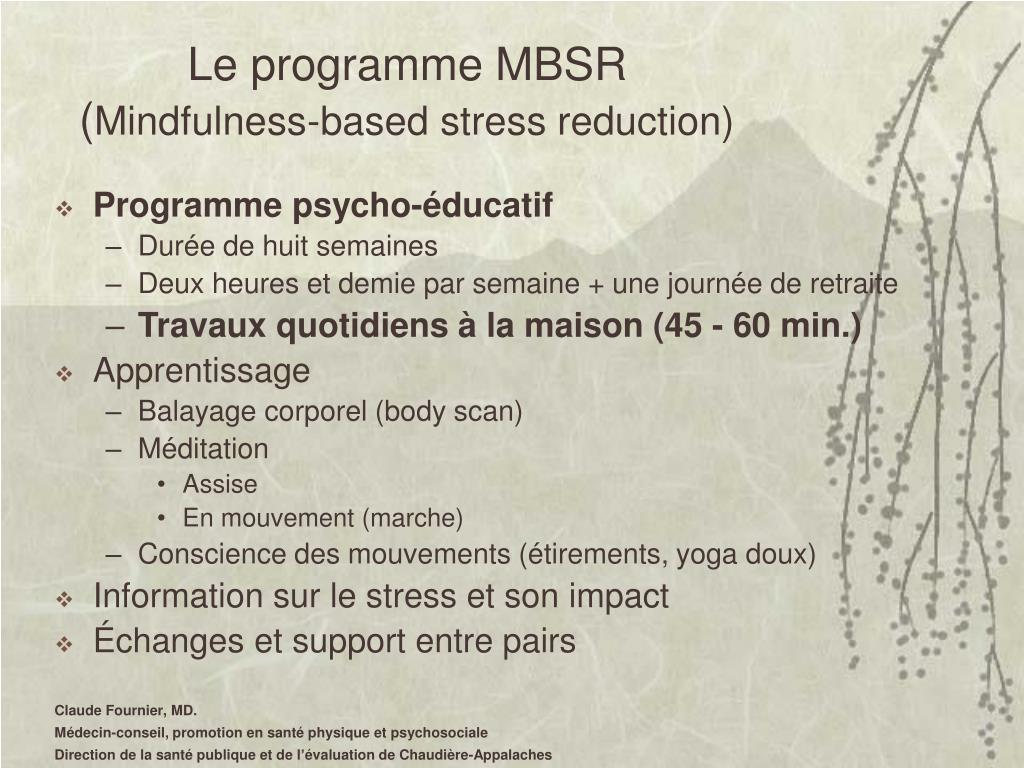 Le programme MBSR