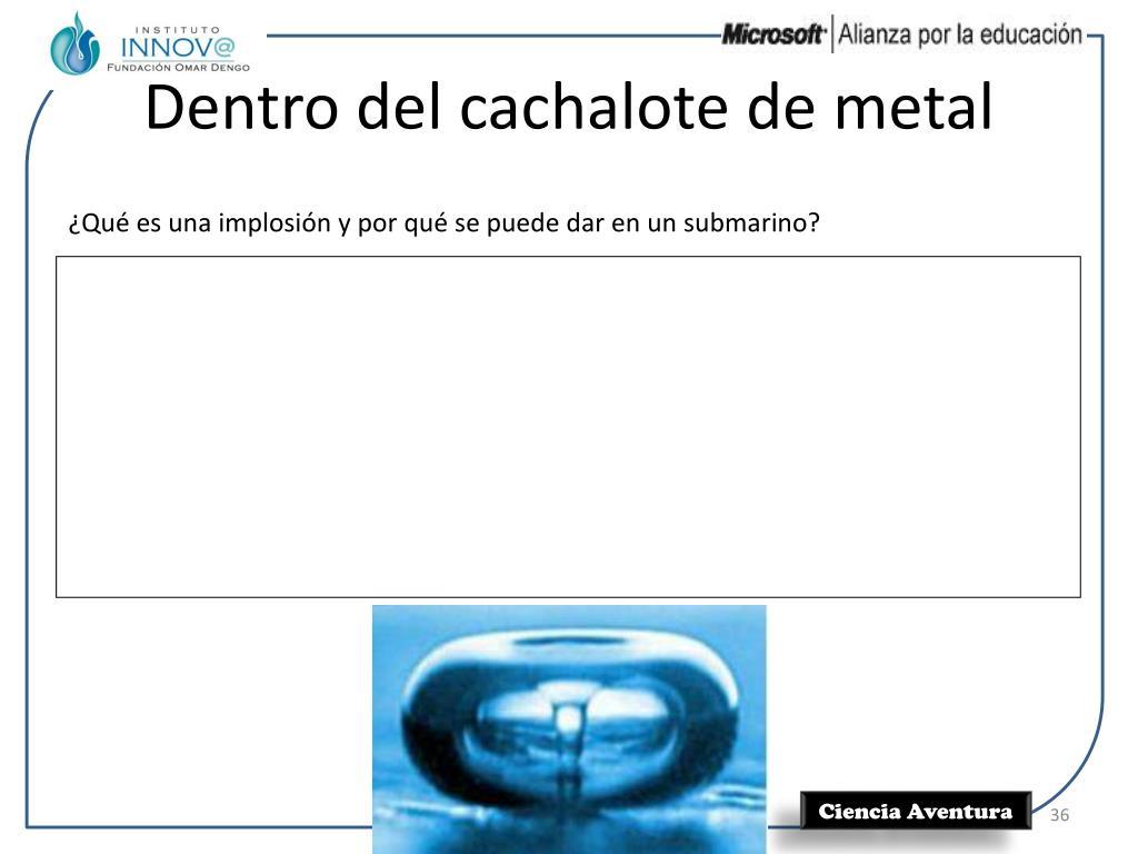 Dentro del cachalote de metal
