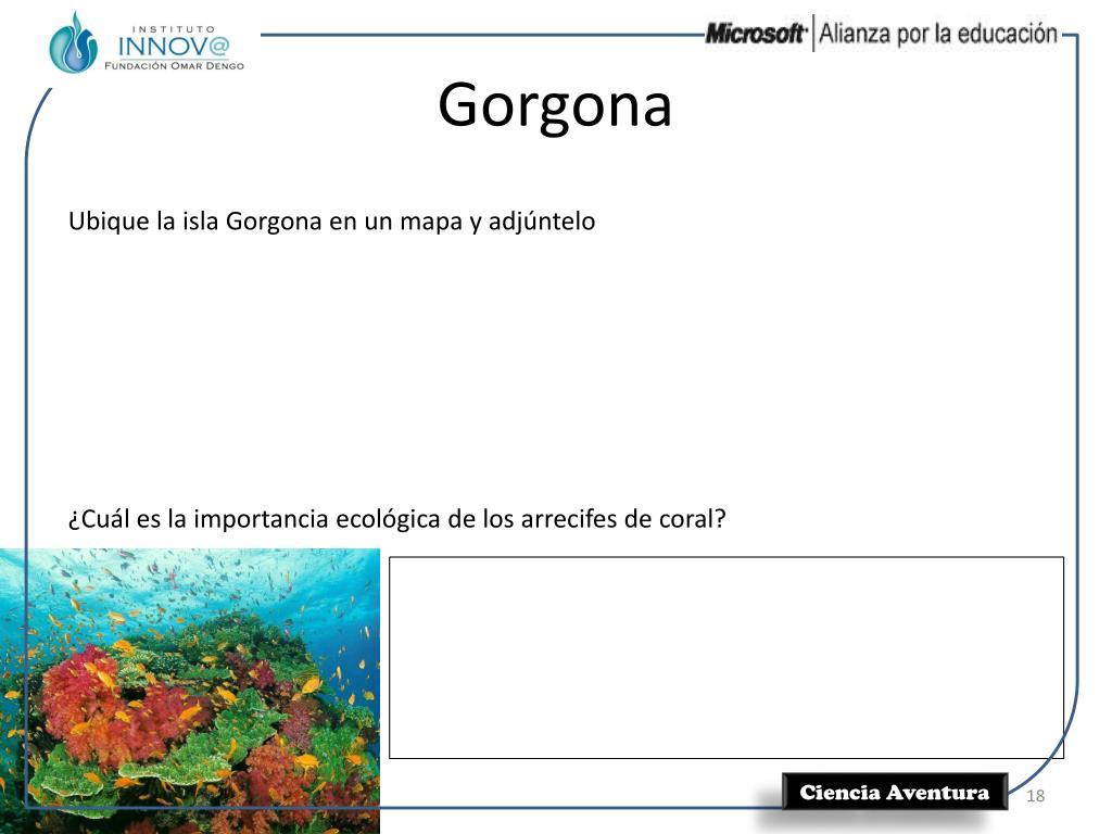 Gorgona