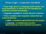 fuzzy logic linguistic variables