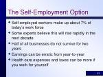 the self employment option