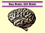 boy brain girl brain
