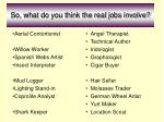 so what do you think the real jobs involve