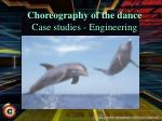 choreography of the dance case studies engineering